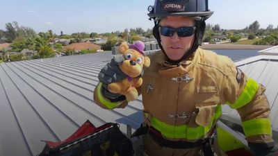 Teddy rescued from school roof by firefighters and reunited with young owner