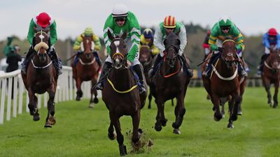 Grand National in numbers