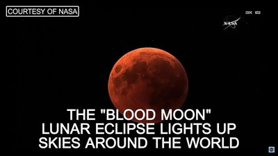 No 'blood moon' for disappointed UK skygazers