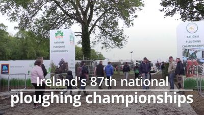 Michael D Higgins opens Ireland's national ploughing championships