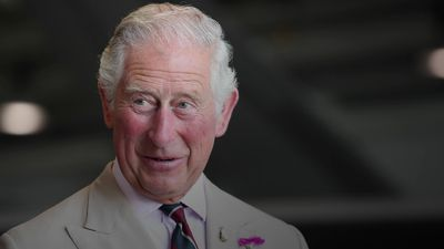 The Prince of Wales at 70: His life and times