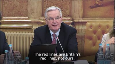 Barnier: The red lines are Britain's red lines, not ours