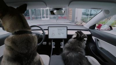 Tesla to introduce pet-saving 'Dog Mode' for Model 3