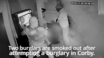 Burglars flee empty-handed after being smoked out