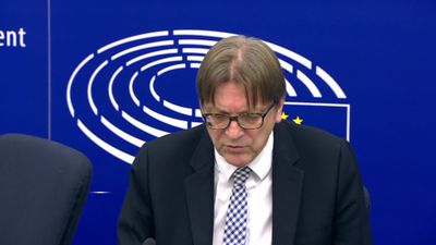 Guy Verhofstadt hails 'Brexit revolt' in UK