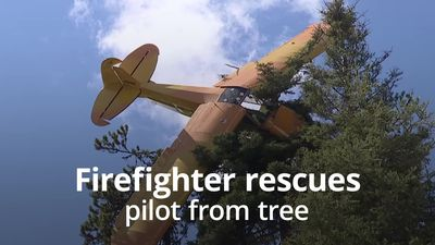 Volunteer firefighter rescues pilot from tree