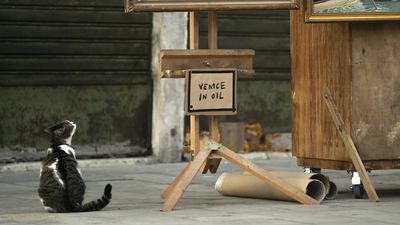 Banksy releases video of new artwork in Venice