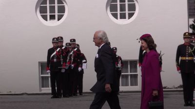 Queen of Sweden tries hurling on visit to Ireland