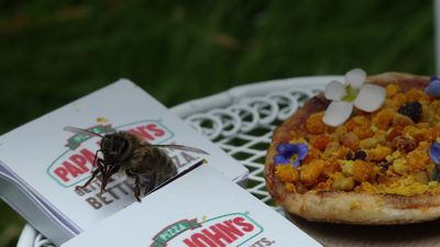 First look at the Beezza - the pizza exclusively for bees