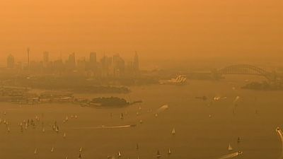 Sydney's skies turn orange as bushfires rage