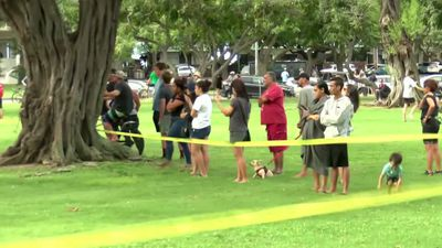 Two killed in Hawaii shooting