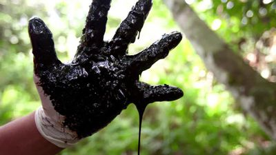 Indigenous leaders: stop oil drilling in the Amazon