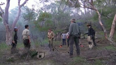 After isolation Aussie dads learn survival skills