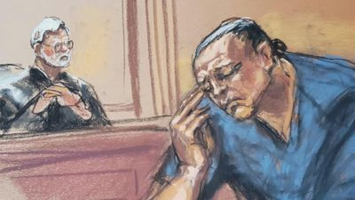 Mail bomb suspect Sayoc pleads guilty