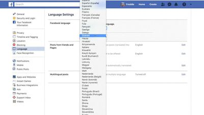 Language barriers hinder Facebook's hate speech fight