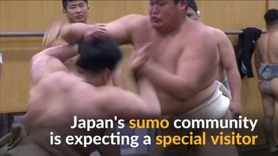 Japanese sumo wrestlers prepare for Trump visit
