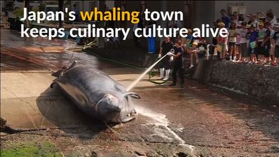 Whaling village in Japan hopes to keep culinary traditions alive