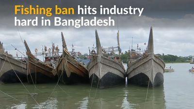 Fishing industry hit hard by ban in Bangladesh