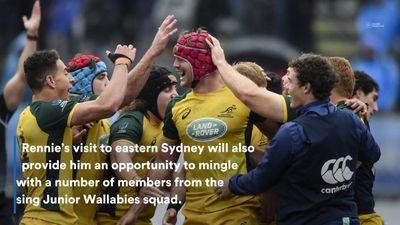 Rennie's Wallabies tenure underway