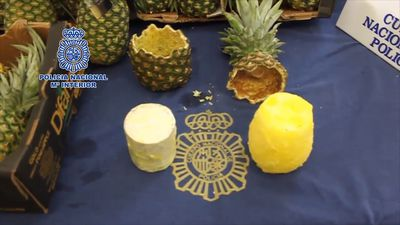 Pina-coke-lada! Madrid police discover 67kg of cocaine in pineapple