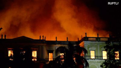 Outrage as fire at Brazil's leading museum destroys priceless artifacts