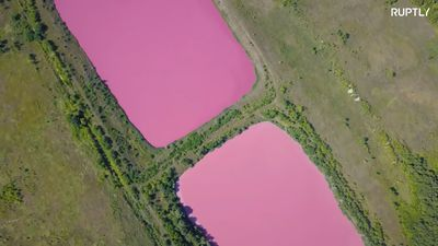 Reservoirs in Samara mysteriously turn pink
