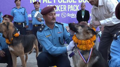 Nepalese police dogs honoured for their duty in annual festival