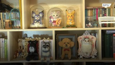 Talented craftswoman makes purr-fect life-like models of people's pets