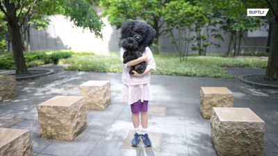 Hyperrealistic masks let owners look like their PETS