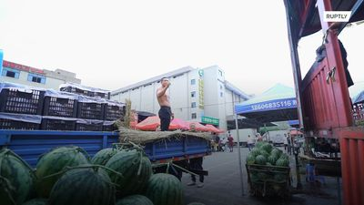 Is this the Michael Jordan of melons?