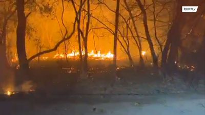 Kincade wildfires rage across Northern California, forcing thousands to evacuate