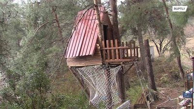Mountaineers self-isolate in treehouse to steer clear of coronavirus