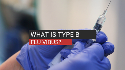 What Is Type B Flu Virus?