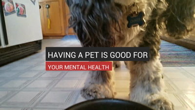Having A Pet Is Good For Your Mental Health