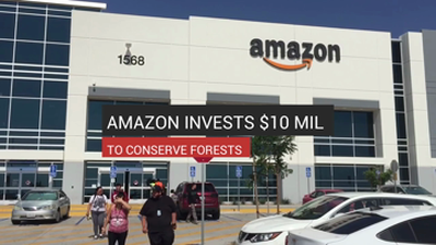 Amazon Invests $10M to Conserve Forests