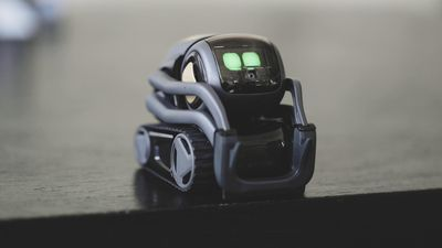 Vector is a robot for grownups