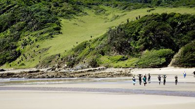 A Holidaymaker's Guide to South Africa's Wild Coast