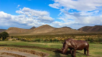 Riding through a Western Cape game reserve in on horseback