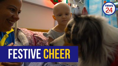 WATCH: Furry friends spread festive cheer in paediatric oncology ward