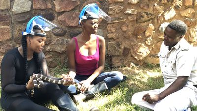 WATCH: Singer and The Voice SA coach Lira takes on snake wrangling