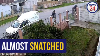 WATCH: Quick thinking PE pitbull owner stops thieves from stealing beloved pet