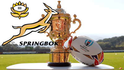 WATCH | Highlights of Springboks' march to Rugby World Cup final