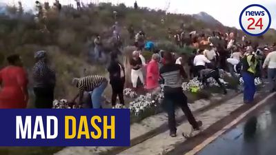 WATCH | Crowds loot alcohol from scene of fatal truck accident