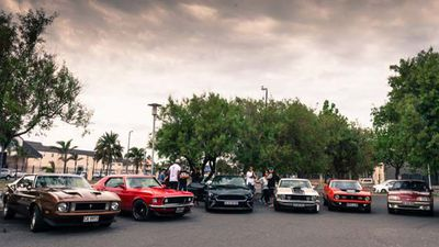 The Ford Mustang Bullitt meets some of its South African siblings