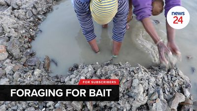 WATCH | Mother and son make a living foraging bait to sell to fishermen