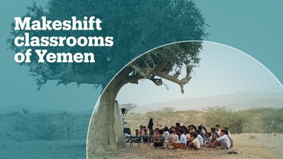 Yemeni children study under trees as classrooms are full