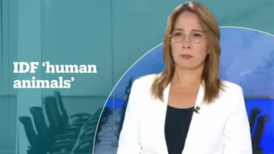 Israeli presenter slammed for calling IDF soldiers 'human animals'