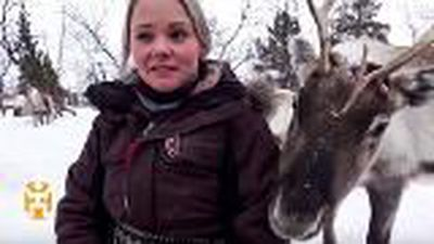 My Day with a Sami Reindeer Herder