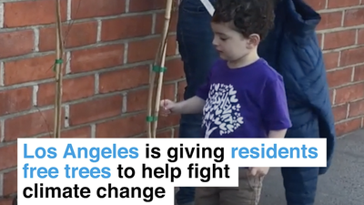 Los Angeles is giving residents free drought-resistant trees to help fight climate change