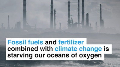 Fossil fuels and fertilizer combined with climate change is starving our oceans of oxygen
